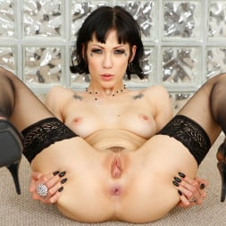 Asphyxia Noir in 'Evil Angel' Anal Required (Thumbnail 9)