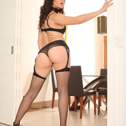 Bobbi Starr in 'Evil Angel' Nacho Vidal Made in Brazil 4 (Thumbnail 3)