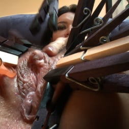 Sophie Dee in 'Evil Angel' Buttman Focused 2 (Thumbnail 4)